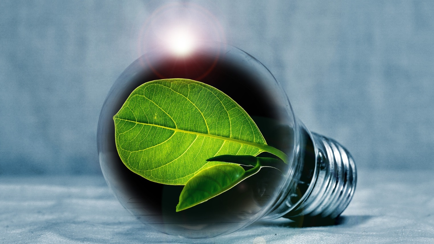 énergie verte ampoule